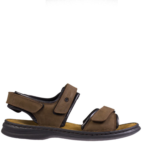 Rafe [Colour: brown] [Size: 49]