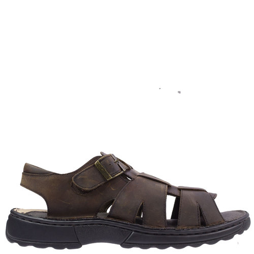 Tempo [Colour: Brown] [Size: UK12]